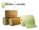 Antibacterial paper towel receives innovation award