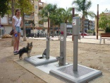 Spanish town sets up dog toilet