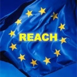 REACH strategies for management