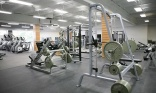 Study shows copper in gym equipment reduces bacteria