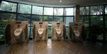 China calls a halt to its over-the-top washroom spending