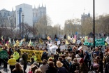 The Extinction Rebellion effect