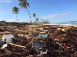 Single-use plastic - industry must take action now