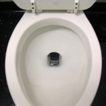 Study: 19 percent of people drop phones down toilet