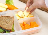 Germs lurking in children's lunch box says study